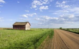 Greener-Pastures