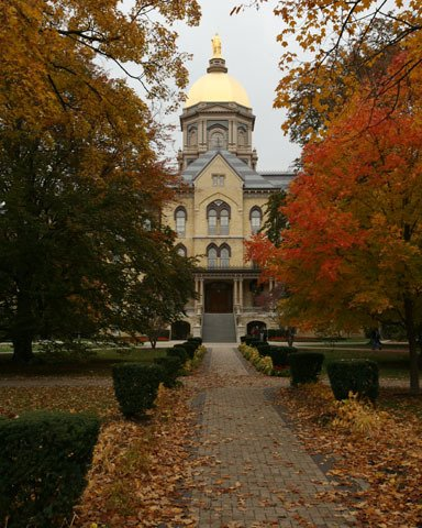 golden dome.jpg